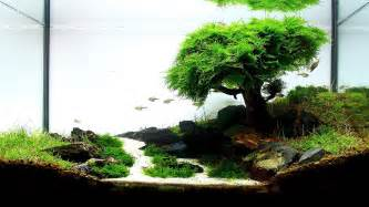 aquascaping basics planted aquarium substrate