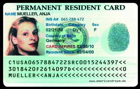 green cards a cautionary tale intelligent travel
