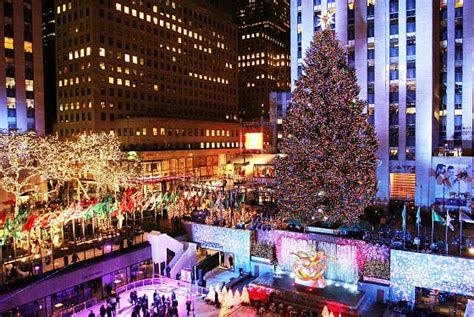 big christmas tree in new york city the guide light displays new york magazine