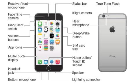 button layout iphone 6 plus diagram iphone 6 plus free engine image for user