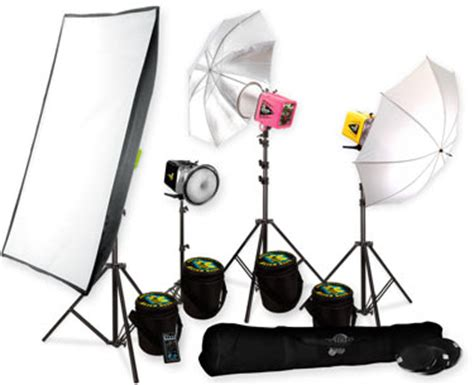 bee lighting kit bees studio lighting michael andrew photography