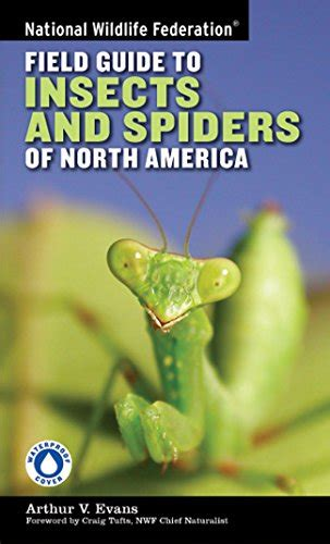 garden insects of america the ultimate guide to backyard bugs books the secret of bugs in my garden hubpages