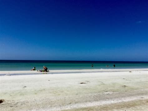 island house siesta key book island house beach resort siesta key hotel deals
