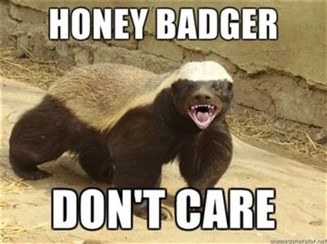 Honey Badger Don T Care Meme - honey badger know your meme