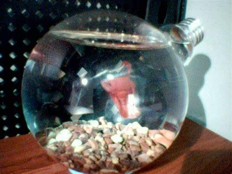 Boneka Ikan Matahari kreatif aneka kreasi dari bohlam bekas sugeng s