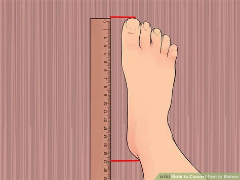 feet in a meter how to convert feet to meters with unit converter wikihow