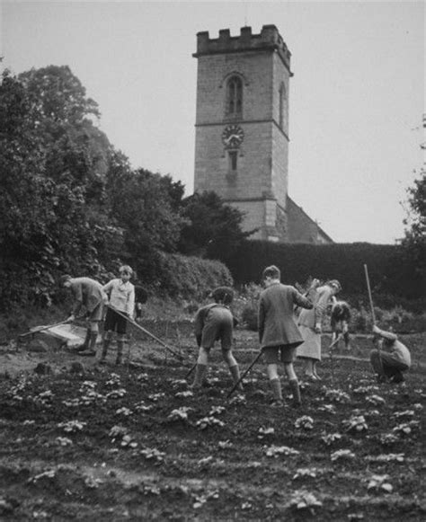 Victory Garden Ww2 by Dig For Victory Vegetable Growing During Wwii In Pics