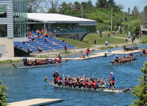 wellington ontario dragon boat festival 2017 welland dragonboat festival june 9th and 10th 2017