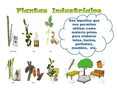 que es layout de plantas industriales utilidad de las plantas