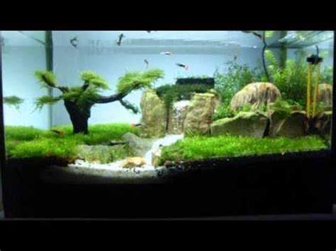 aquascape waterfall aquascape waterfall in tank avi youtube