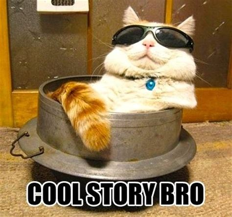 Cool Story Bro Meme - meme cool story bro funlexia funny pictures