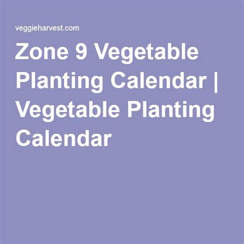 zone 9 vegetables 1000 ideas about zone 9 gardening on