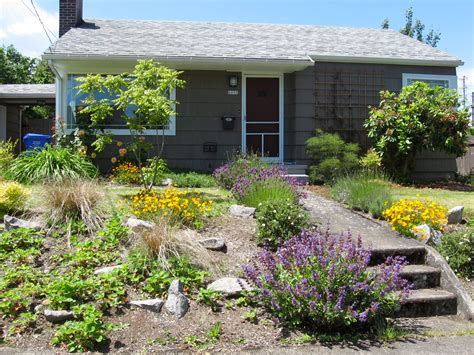 low maintenance landscaping ideas rock and plants home low maintenance plants and flowers for front yard