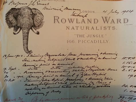 Letter Rowland Letters In The Limelight Rowland Ward Taxidermist Towards Dolly