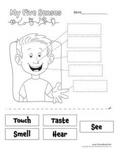 pictures five senses worksheets dropwin
