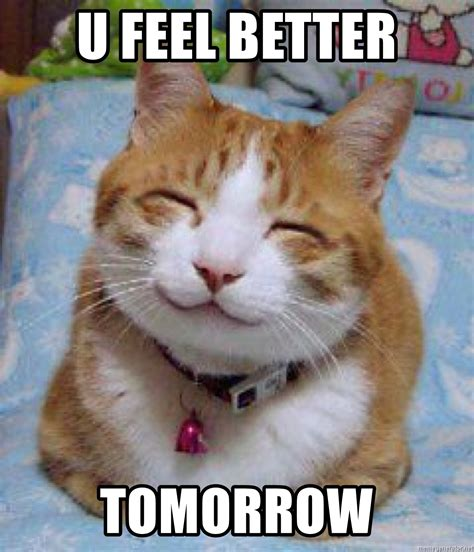 feel better meme u feel better tomorrow happy cat 1 meme generator