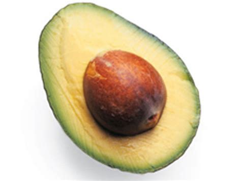 function of healthy fats fats functions and healthy sources new health guide