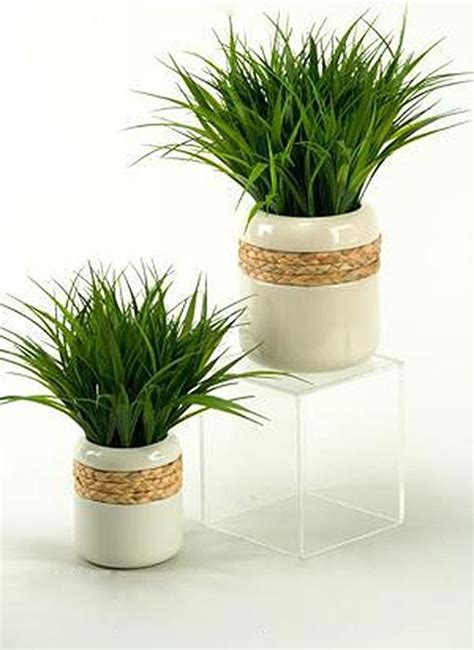 indoor ceramic planters wildgrass in ceramic planter traditional indoor pots and planters