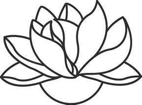 Lotus Outline Lotus Flower Line Drawing Cliparts Co