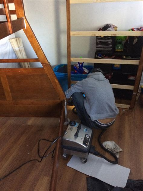bed bug removal service bed bug removal ri professional bed bug exterminators