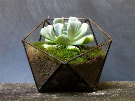 Terrarium Planter by Glass Geometric Terrarium Geometric Planter By