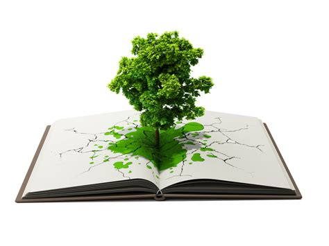 the sapling books how will eco books make you rich popsop consumer
