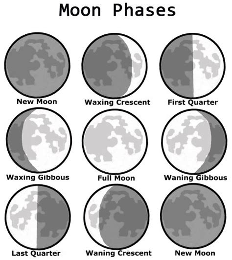coloring pages of the moon s phases mckenna mrs home page