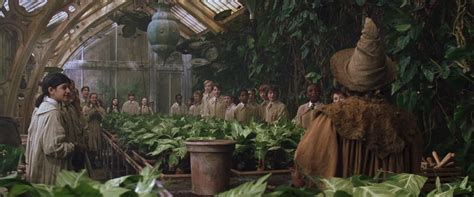 herbology class harry potter wallpaper 1920x800 183580