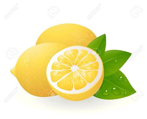 artwork clipart lemon clipart clip of lemon clipart 4225