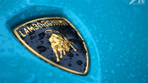 lamborghini logo wallpaper lamborghini logo wallpapers pictures images