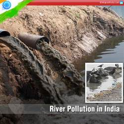 Essay On Water Pollution In India by Water Pollution In India Essay