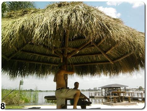 Oasis Tiki Huts Custom Tiki Hut Construction Ta Bay Area Florida