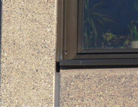 fensterbrett schutz schutz mauerseglern u a geb 228 udebr 252 tern 220 ber