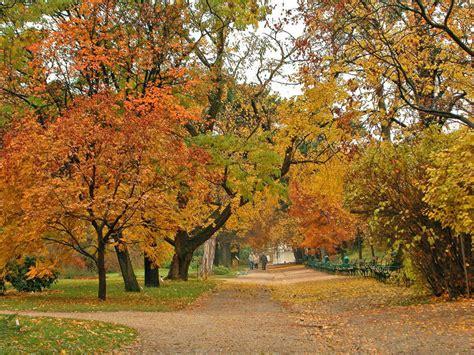 Botanical Gardens Vienna Botanical Garden Of The Of Vienna