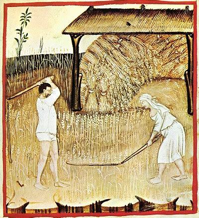 storia alimentazione l alimentazione nella storia alimentazione e sostenibilita