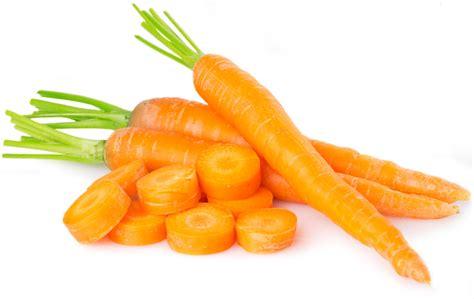 conservation des carottes