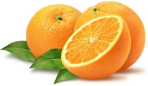Benihbibitbiji Buah Jeruk Lemon Cui the other story manfaat buah jeruk untuk kesehatan