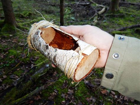 bush craft for 11 bushcraft skills wilderness will want