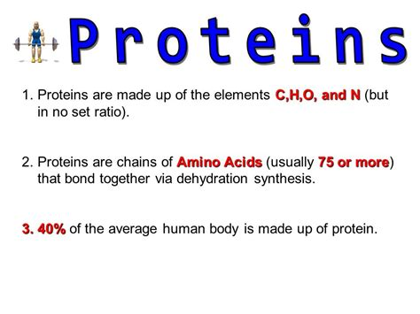 protein elements biochemical molecules ppt