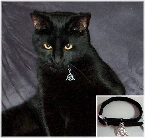 witchs familiar cat collar  sterling silver charm