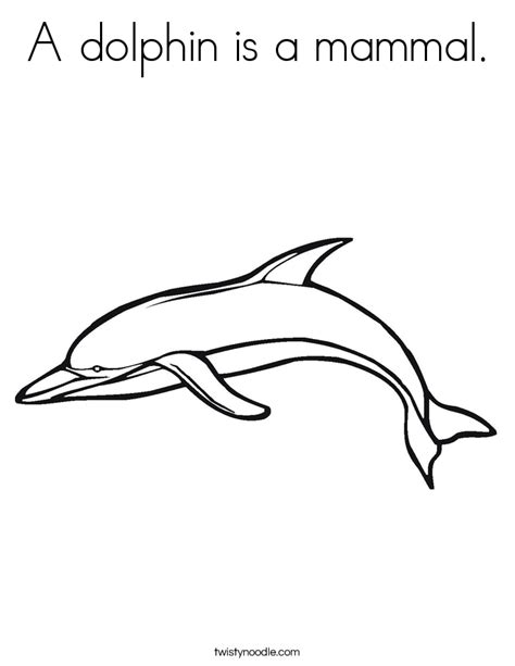 is a a mammal a dolphin is a mammal coloring page twisty noodle