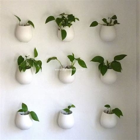 home decoration plants creative ways to decorate your home with plants diy home