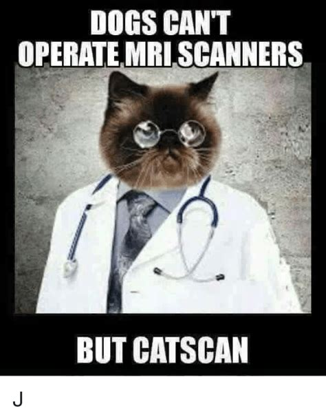 Scanners Meme - dogs can t operate mri scanners but cat scan j meme on me me