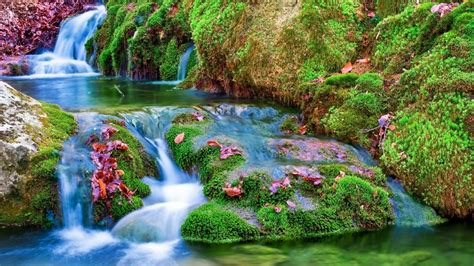 Mural Painting On Wall waterfalls river creek reflection pretty summer green