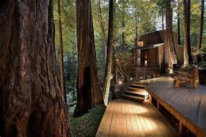big sur residence among the redwoods curbed la