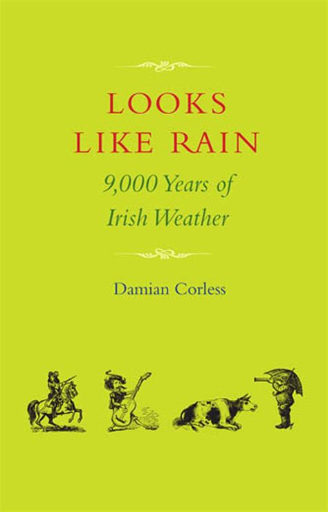 the rainy year books 10 most beautiful books on beautifulnow