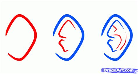Anime Ears by How To Draw Anime Ears Draw Ears Step By Step