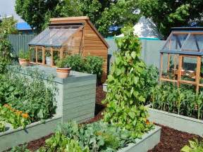 small kitchen garden ideas casa dintre copaci