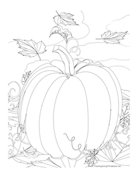 pumpkin leaf coloring pages this thanksgiving coloring page features a giant pumpkin