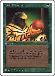 Giant Eagle Gift Card Selection - the retro cube mtgcanada commtgcanada com